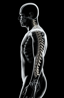 chiropractic-spinal-adjustment